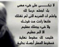 عماد الدين ناصر